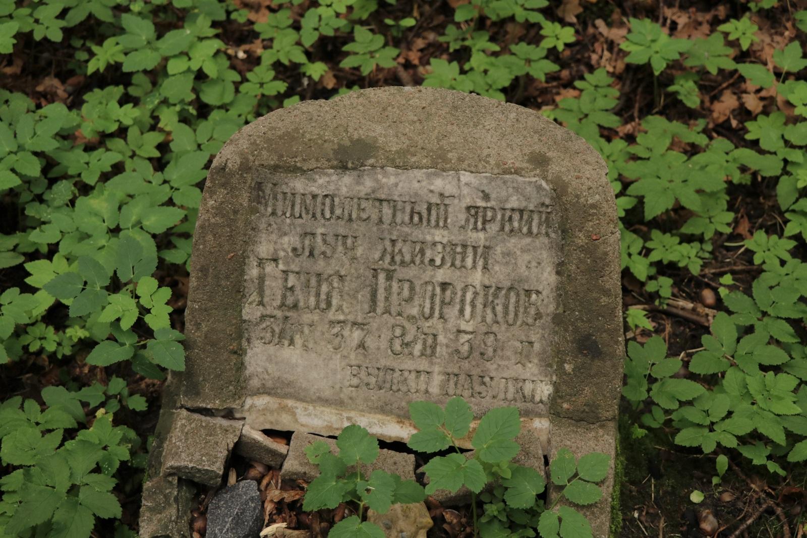 Лютеранское кладбище на Васильевском острове