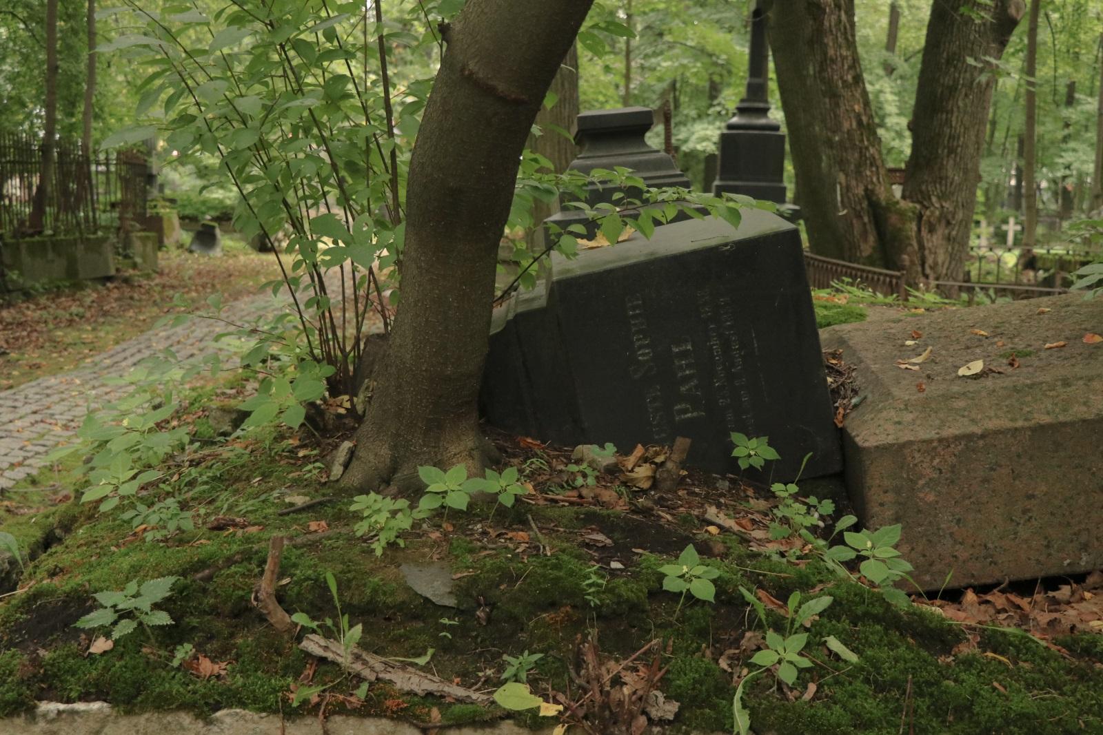Лютеранские могилы