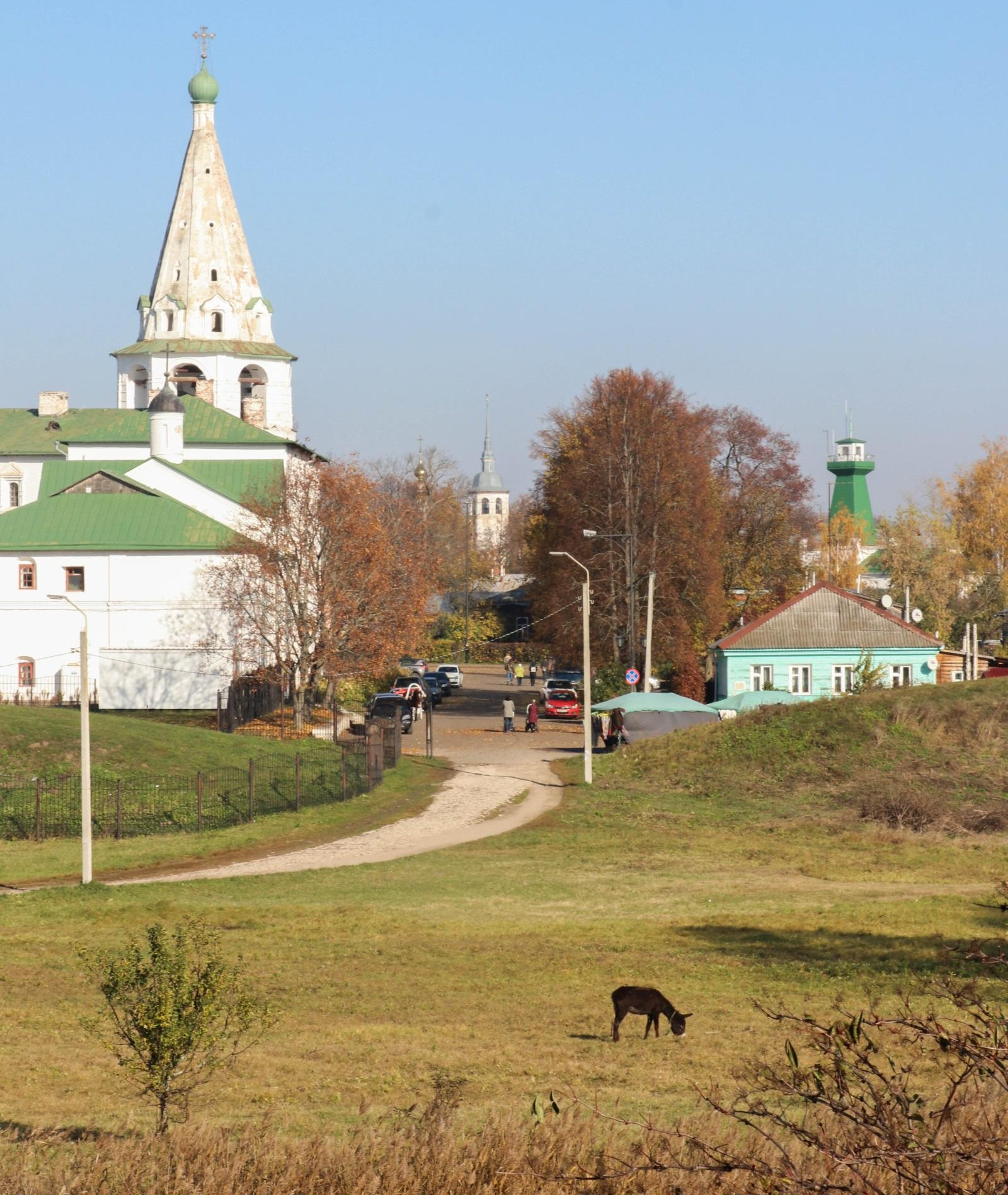 Виды Суздальского кремля