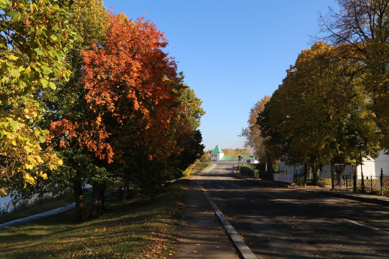 Суздальские улицы